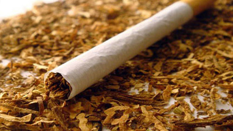 вред от курения сигарет