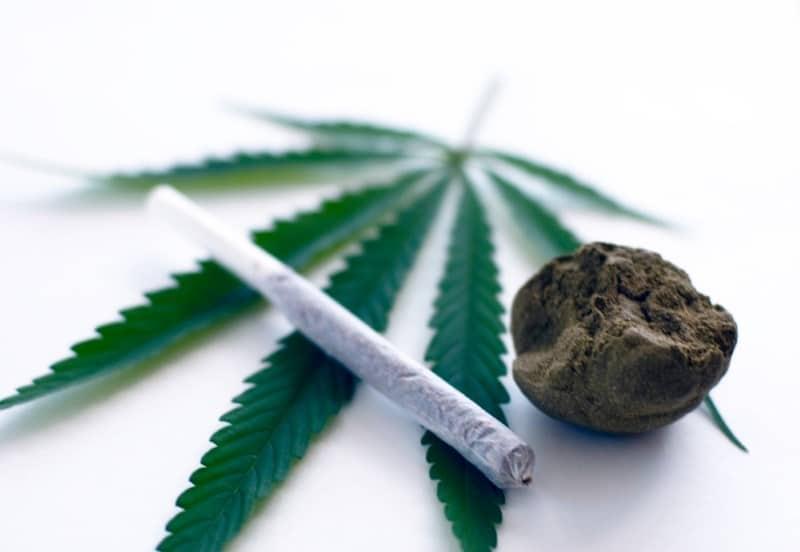 сколько держится марихуана в моче