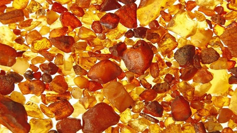 вред янтарной кислоты