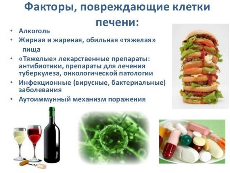 восстановление клеток печени