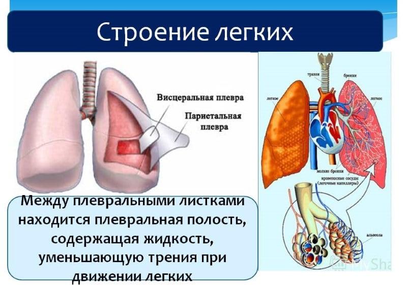 почему болят легкие при кашле