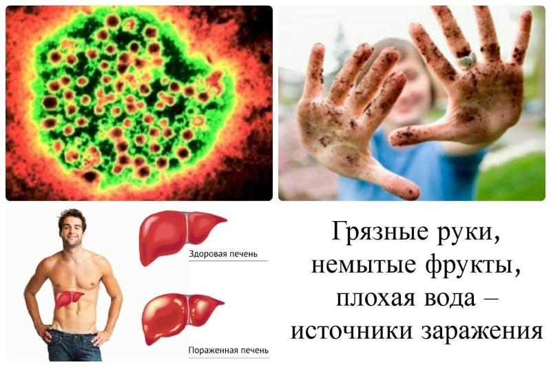 профилактика печени препаратами