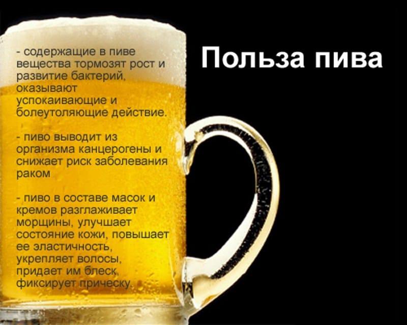 Пиво  Википедия