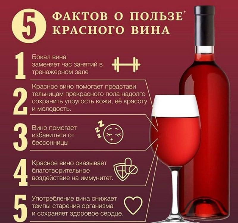 безалкогольное вино при беременности на ранних сроках