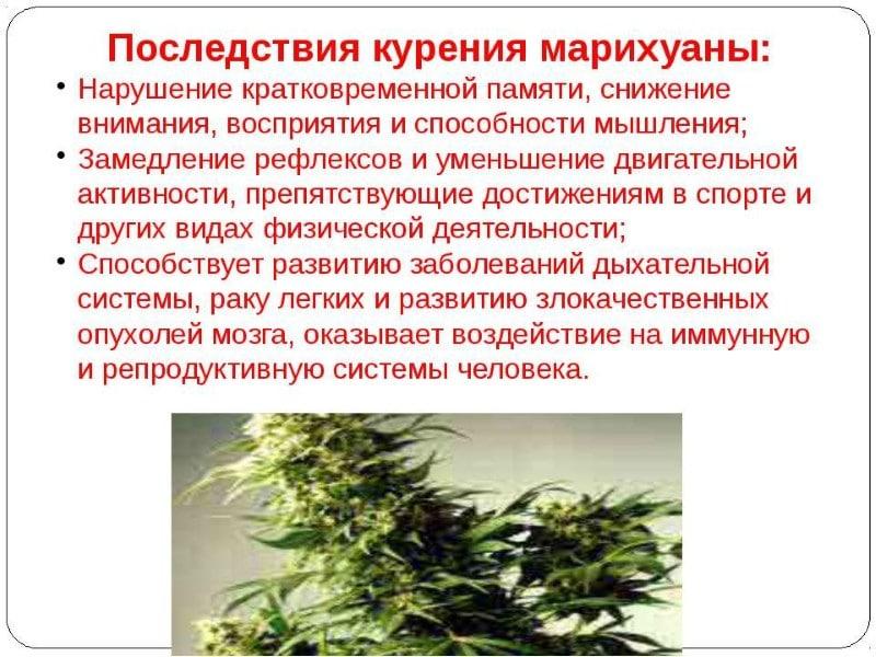 наркотик