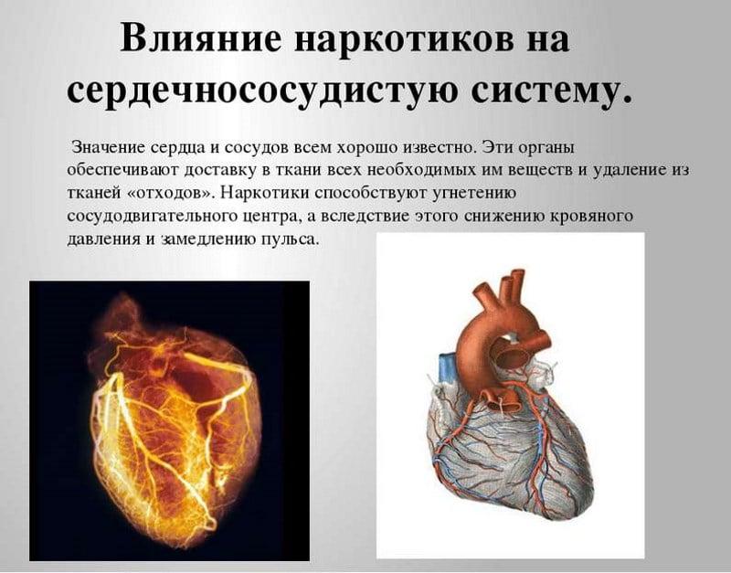 влияние наркотиков на здоровье человека