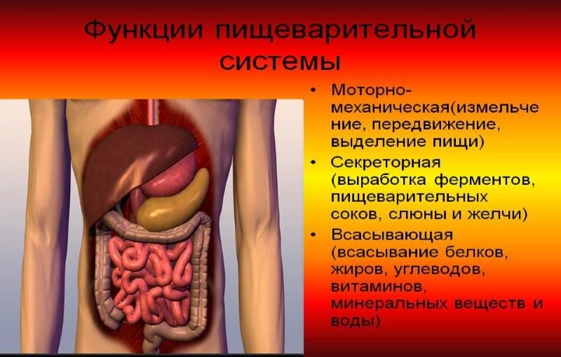 вред наркотиков на организм человека