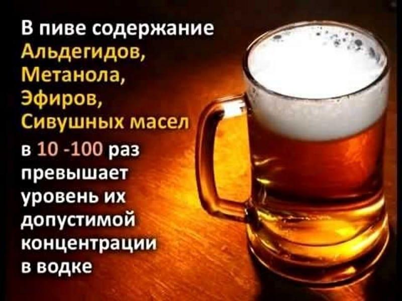как влияет пиво на мужчину