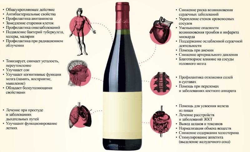 закуска к сухому красному вину