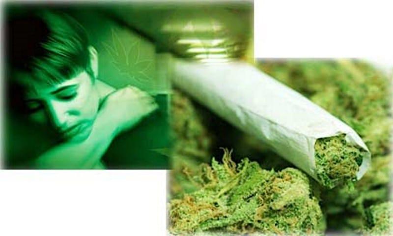 Картинки по запросу Действие марихуаны