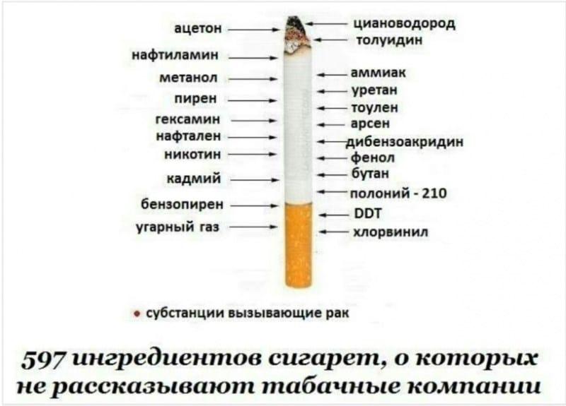 вред табака на организм человека