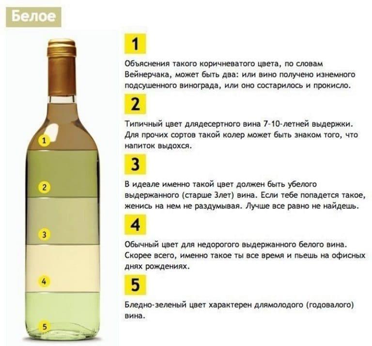 Как сделать вино из черноплодки: 5 рецептов вина из 44