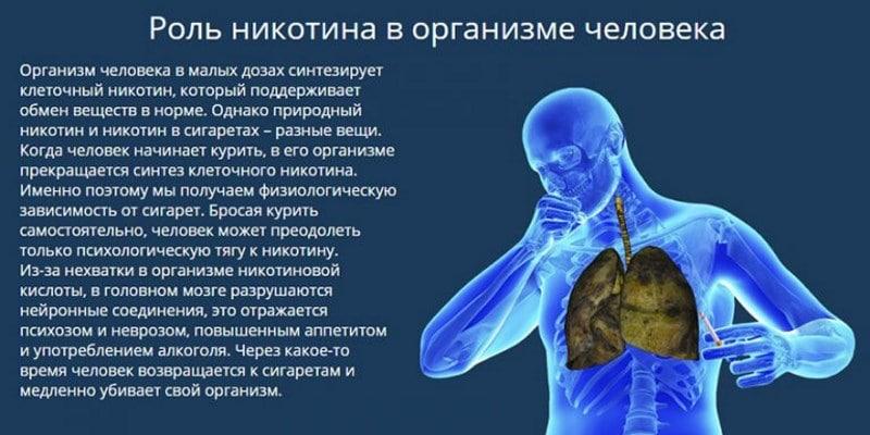 польза никотина для организма человека