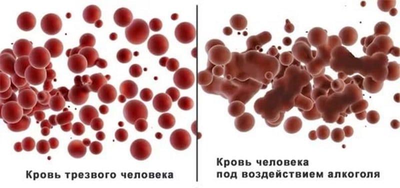 продукты распада алкоголя в организме человека