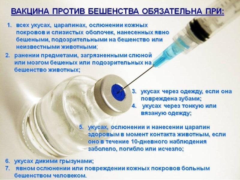 антирабическая вакцина и алкоголь последствия