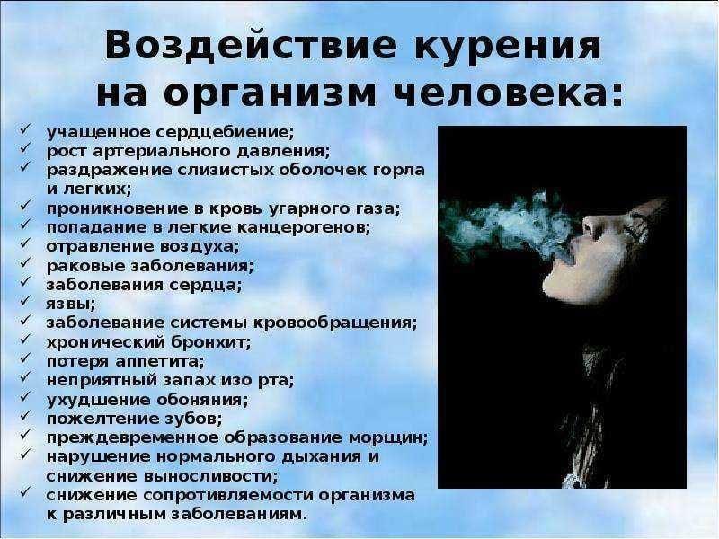 как лучше хранить сигареты