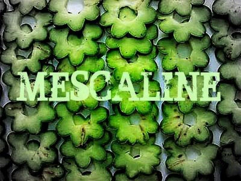 мескалин что это такое