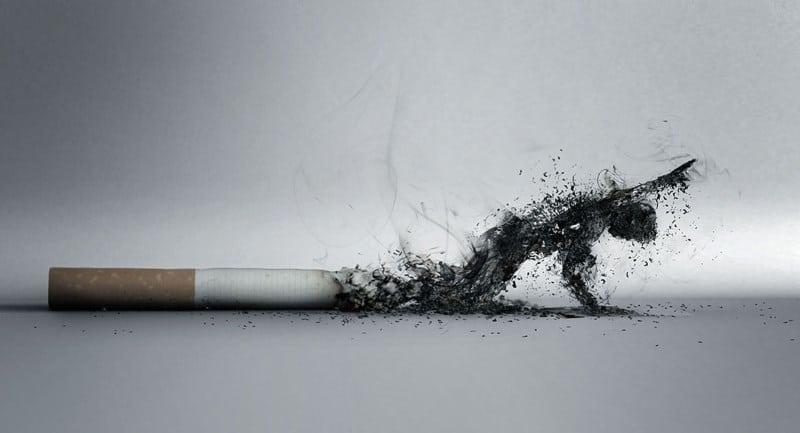 девайсы для курения табака