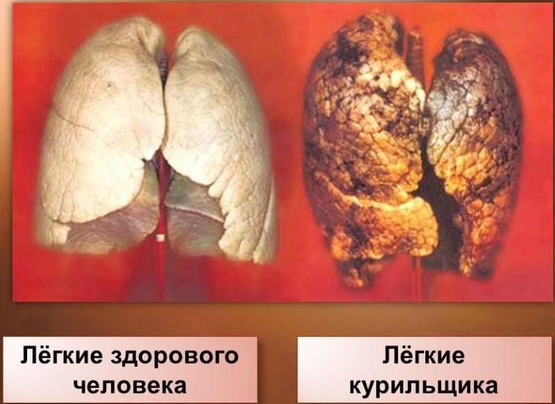 сколько никотина в наргиле