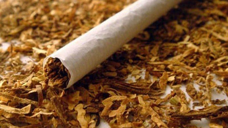 сколько табака в сигарете в граммах