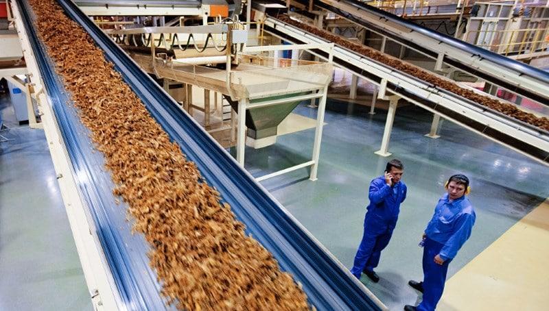 табачные фабрики России список