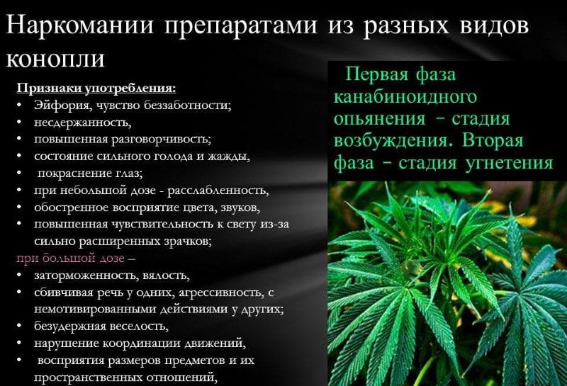 зрачки при наркотическом опьянении