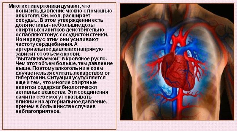 артериальное давление у человека