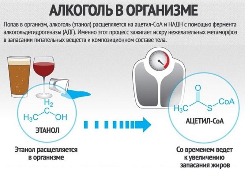 что такое сенсибилизация к алкоголю