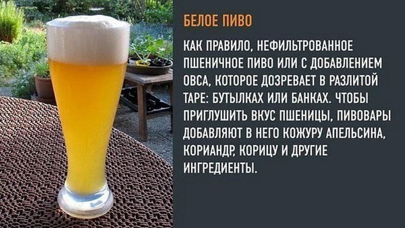 нефильтрованное безалкогольное пиво