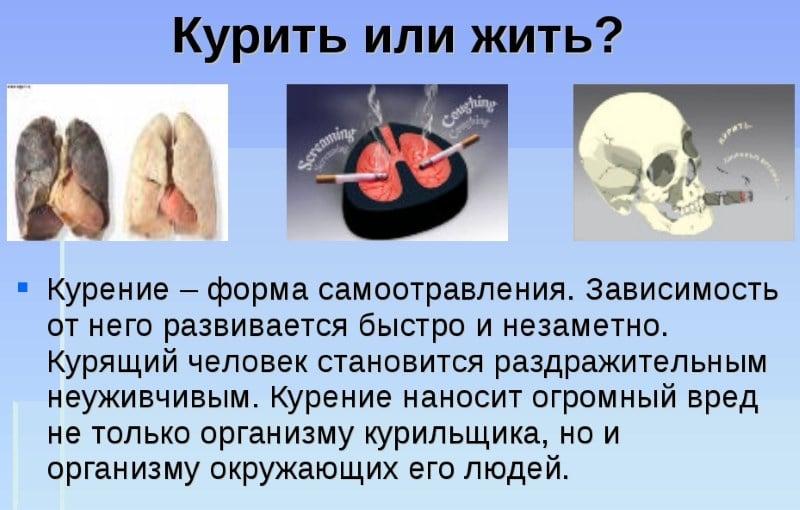 польза фитосигарет