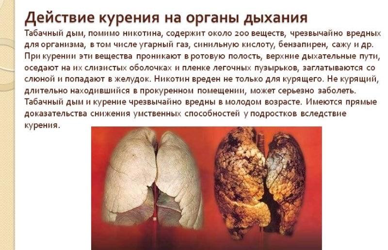 через сколько организм очищается от никотина