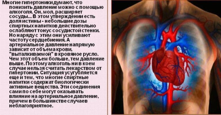 Коньяк и сосуды головного мозга