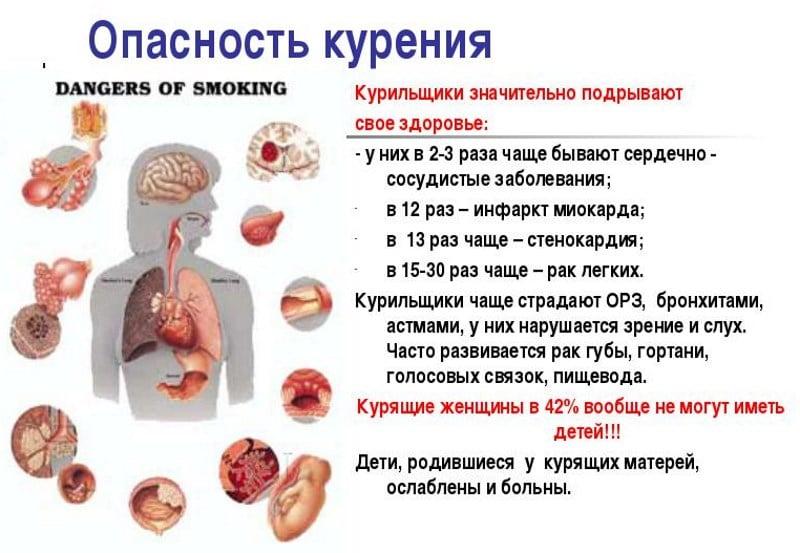 влияние чистого никотина на организм человека