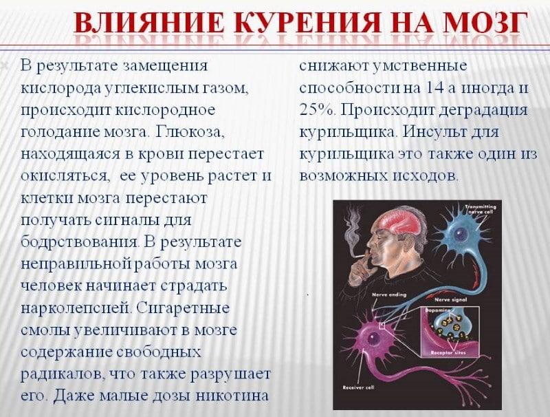 мозг курильщика