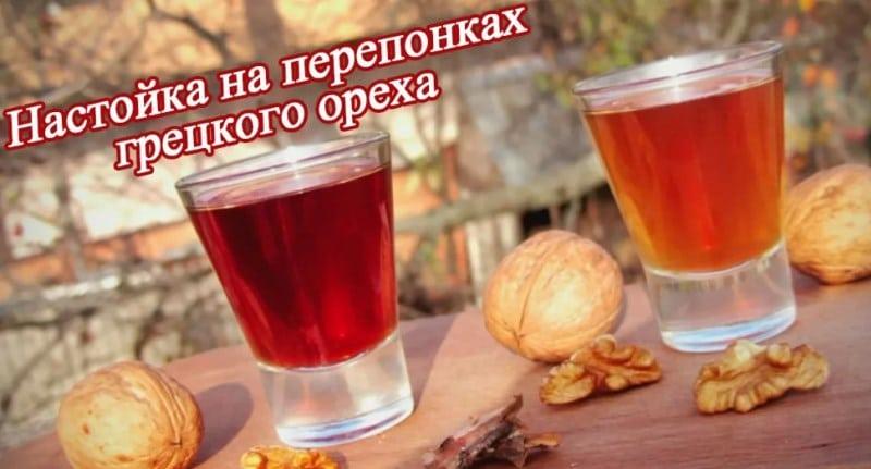 настойка на перегородках грецкого ореха на водке польза и вред