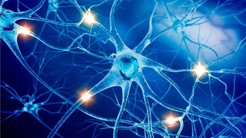 влияние алкоголя на нервную систему человека